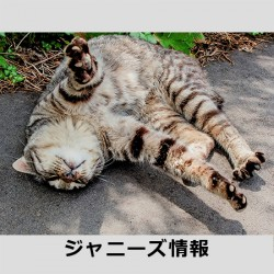 20150715inagaki
