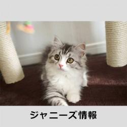 20160512sakurai