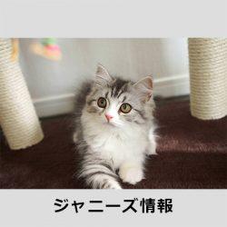 20160901kimura