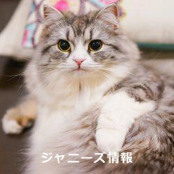 20170110matsumoto