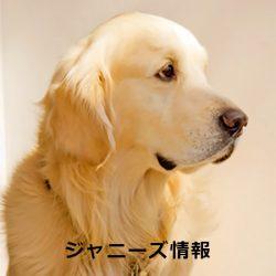 20170217kimura