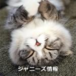 「嵐・櫻井翔の親友」元ジャニーズJrの飲食店が突然閉店し、ファンが悲鳴