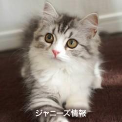 20160713takizawa