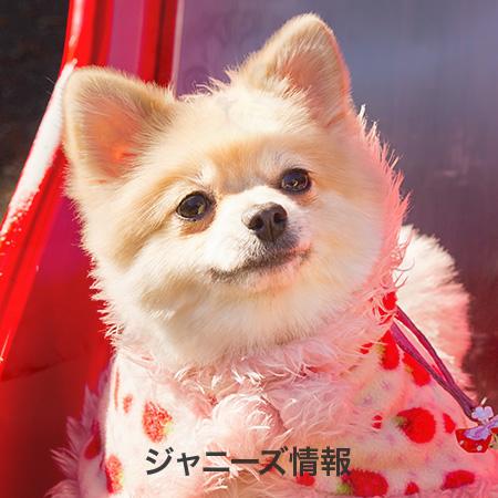 キンキ キッズ 正広 中居 KinKi Kids(キンキキッズ)堂本光一くんの伝説天然エピソードまとめ☆知っておきたいあの名言も……!