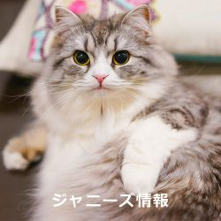 20170311_asajo_inoo