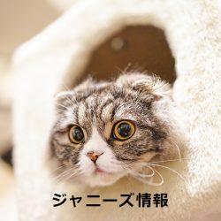20170507_asajo_doumoto