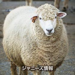 20170530_asajo_kamenashi