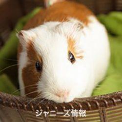 20170605_asajo_kusanagi
