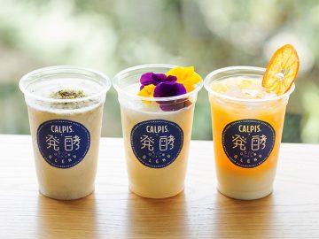 「発酵+発酵」。思いがけない美味しさに出会える「カルピス」新体験!