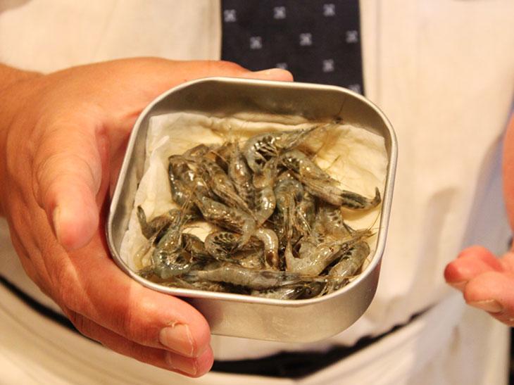 「三番瀬」を釣って揚げる天ぷら職人を訪ねて。【房総food記】