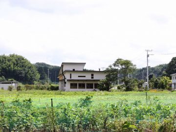 緑の風吹く天然酵母の窯焼きピッツェリア【房総food記】