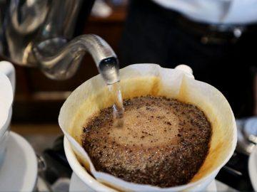 もう普通のコーヒーじゃ物足りない!名店『ベルニーニ』で極上コーヒーの淹れ方を教わった