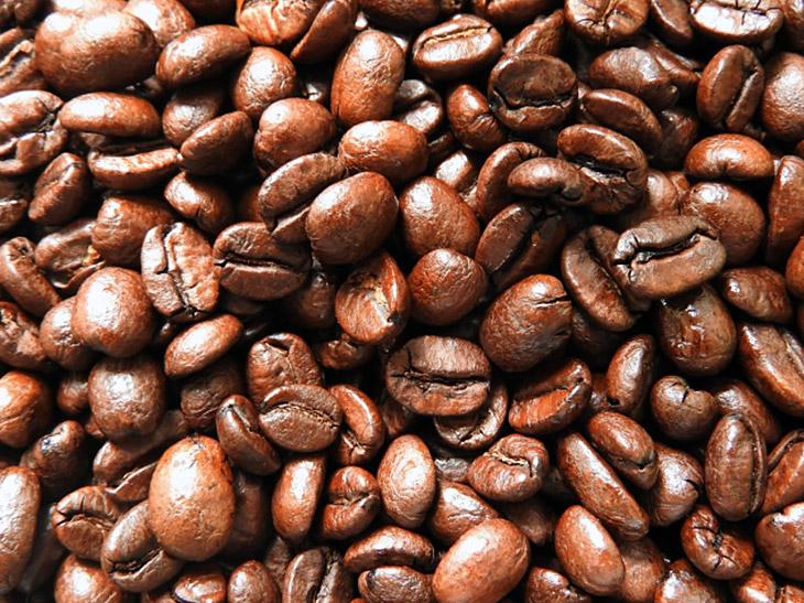 おいしいコーヒーの原点は「おいしい豆」。その選び方とは?|コーヒープレス古今東西