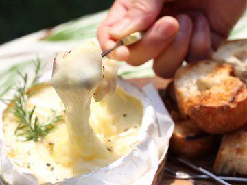 秋のキャンプにぴったり! インスタ映え必至の濃厚チーズレシピ3品