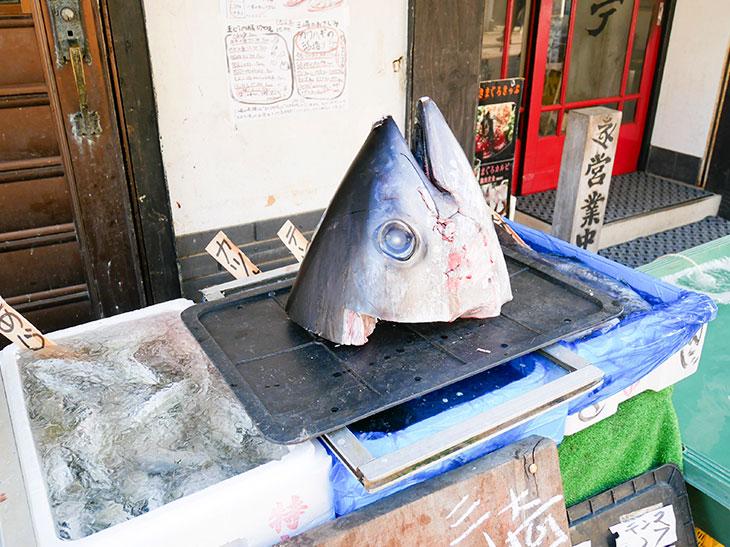 店頭にはマグロの頭がドーン! その下のケースでは、今朝とれたアジなど近海モノの魚を販売