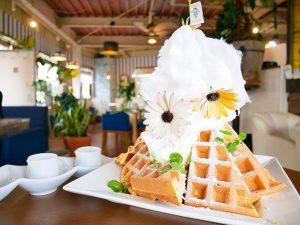 調布の新名物『HARMONIE TEA&SWEETS』の「でかもりスイーツマウンテン」を食べてきた!