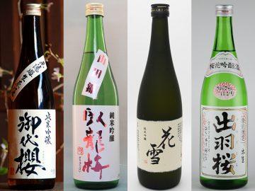 花見で飲みたいお酒はこれ! 日本酒イベント「和酒フェス」で飲みたい日本酒5選