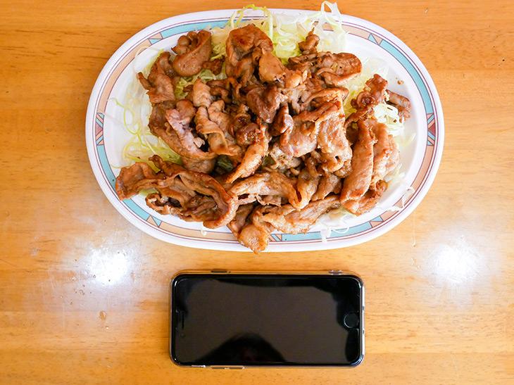 肉&キャベツで331g(器の重さを除く)。縦17cm、横25cmのオーバル皿に盛り付け