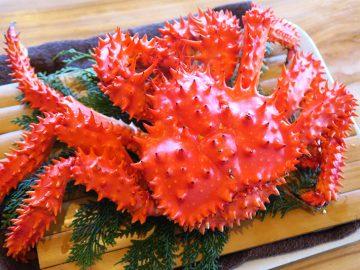 カニは冬だけじゃない! 夏が旬の幻のカニ「花咲ガニ」は普通のカニとどう違う?