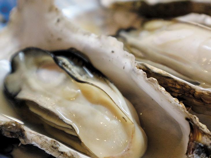岩手『いわて一本松商店』の「蒸し牡蠣」