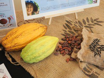 チョコレートがアート作品に! カカオ生産者とチョコレートの未来につながる「カカオ・トレース」って知ってる?