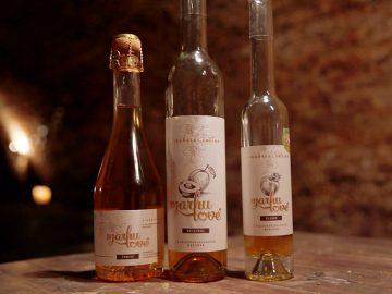 世界でも珍しい! チェコ共和国の「アプリコットワイン」を飲みに本場に行ってきた
