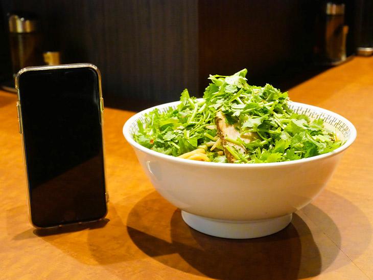 「スパイス・T(トリプル)パクチーラーメン」1330円に麺大盛り+100円。上一面に鮮やかなパクチーの緑が広がる