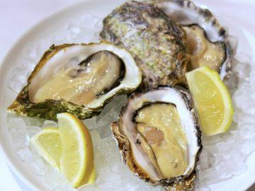 牡蠣好き必見! 銀座の広島アンテナショップで大人気の「牡蠣食べ比べ」が今だけ楽しめる