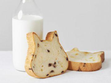猫の形にキュン! 春日部店をオープンした高級ミルク生食パン「ねこねこ食パン」とは?