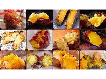 最も美味しい焼き芋って!? 「さつまいも博2020」(埼玉)で焼き芋グランプリが決定!