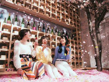 桜風呂に浸かって佐賀の日本酒に酔える「サクラチルバー」が渋谷にオープン