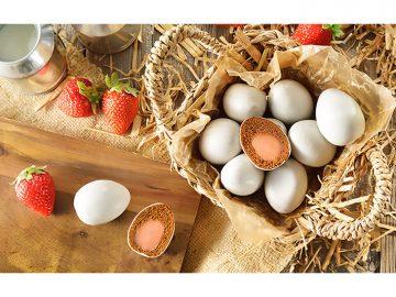 見た目も中身も卵にそっくり! 「神戸ぷりんマドレーヌ」に春らしい新作が登場