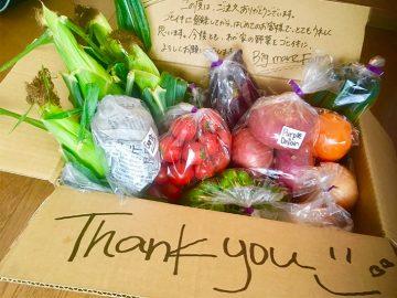 食べたい野菜を農家に直接リクエストできる「ゴヒイキ」が最高だった