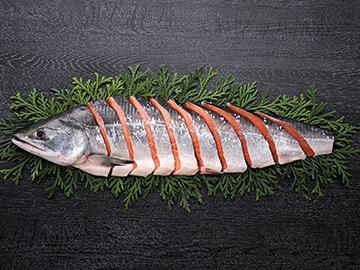 「時鮭」 画像