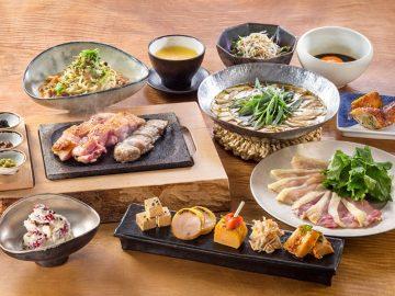 地鶏全8品コースが驚異の2800円!『地どり屋つかだ』の大人のための地鶏料理とは?