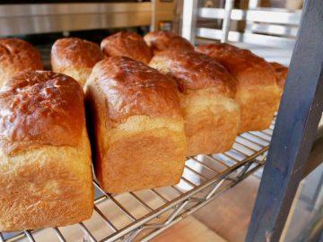 鎌倉に行ったら絶対買い! 行列の生食パン店『Bread Code』の20斤限定「星の井食パン」が美味しすぎる理由