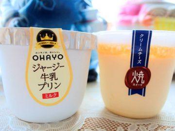 一番売れているプリンはコレ! オハヨー乳業の「焼スイーツ クリームチーズ」を食べてみた