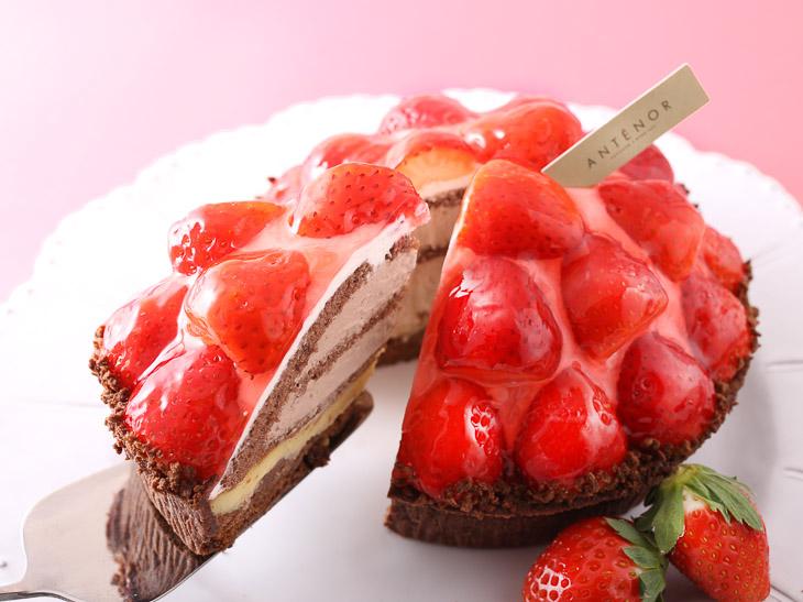 旬の苺をとことん堪能! 『アンテノール』の最旬「苺ケーキ」6選