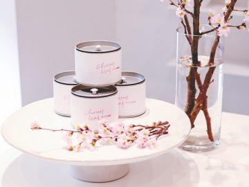 まるで飲む桜餅! 桜の葉を揉み込んだ「さくらの煎茶」でひと足先に春を感じよう
