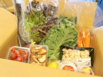 「青果BOX」で野菜&果物のお取り寄せデビュー! 使ってわかった3つのメリットとは?