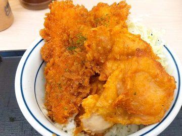 『かつや』に登場した限定丼「タレカツとから揚げの合い盛り」を食べてみた!