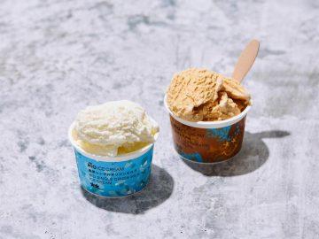 どんな味? ローソンに話題のクラフトアイス「ヒオ アイスクリーム」が登場