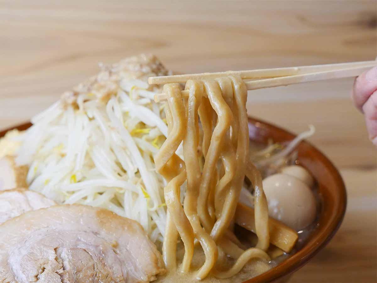 スープをしっかり持ち上げる極太麺。スープも麺もチャーシューも、みんな力強い印象