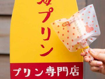昨年夏に約1.7万本売れた熱海プリンがアイスになって再登場! 夏限定の 「プリンアイスセット」とは?