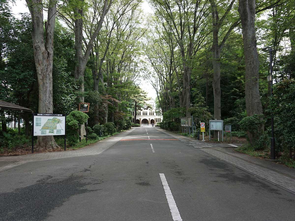 府中のキャンパスは、ドラマなどでもたびたび採用される名所