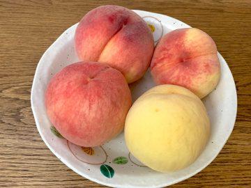 冷やしすぎはNG! 高野フルーツパーラーが教える桃をおいしく食べるためのコツとは?